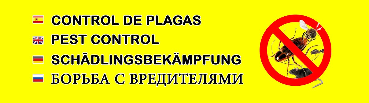 SAFECLEAN TENERIFE - Control de Plagas en Tenerife